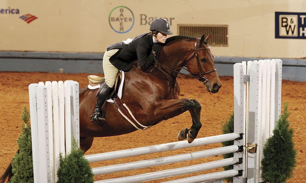 American Quarter Horse Breeds Cowgirl Magazine