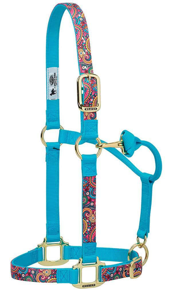 turquoise halters horse tack cowgirl magazine