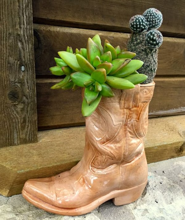 western-ways-to-decorate-with-succulents