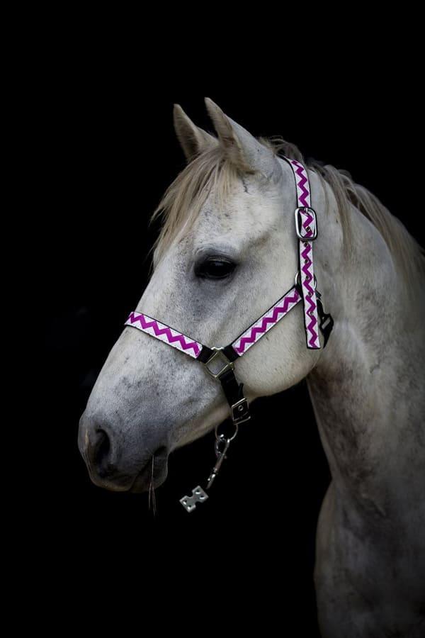 pink-chevron