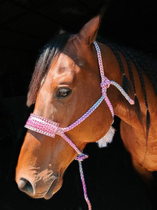 pink-halter