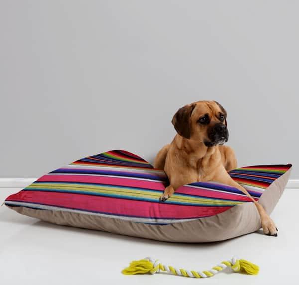 serape-dog-beds