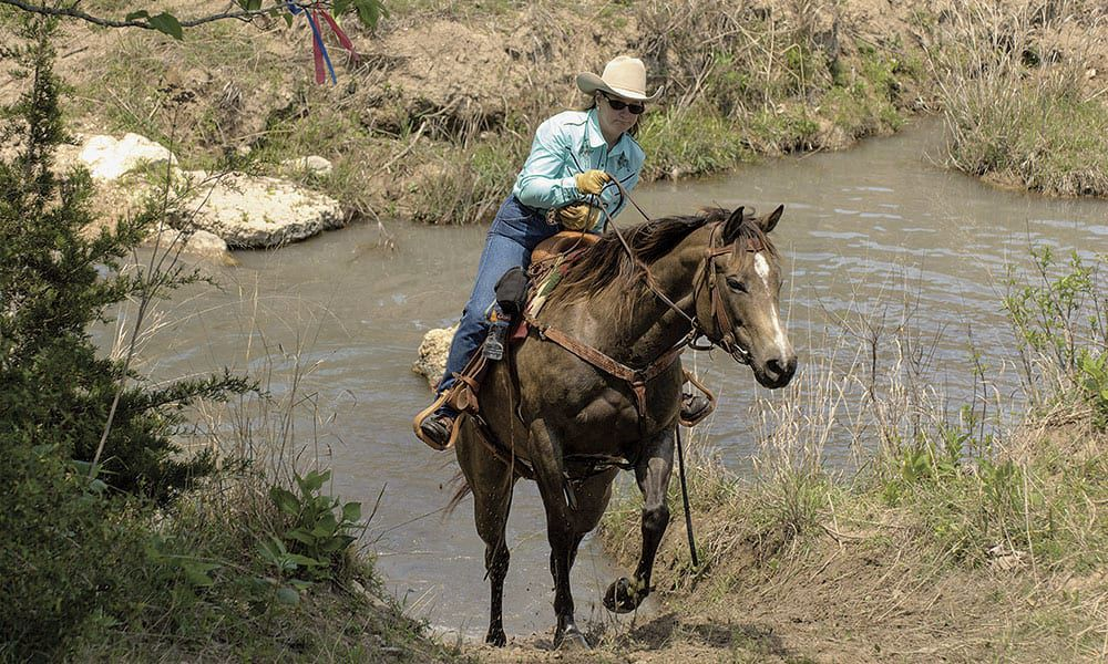 Horse Sport Horse Sports Equine Activities Competitive Trail Ranch Pleasure Western Dressage Cowboy Dressage Ranch Sorting Team Penning Cowgirl Magazine