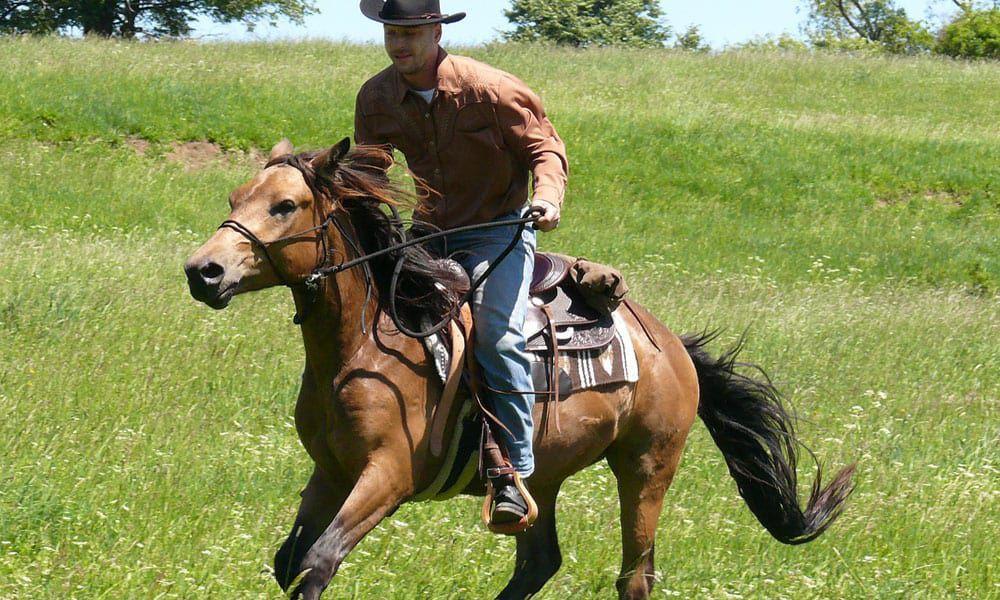 Cowgirl - Bucking