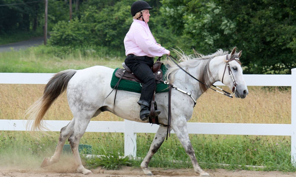 Cowgirl - Canter