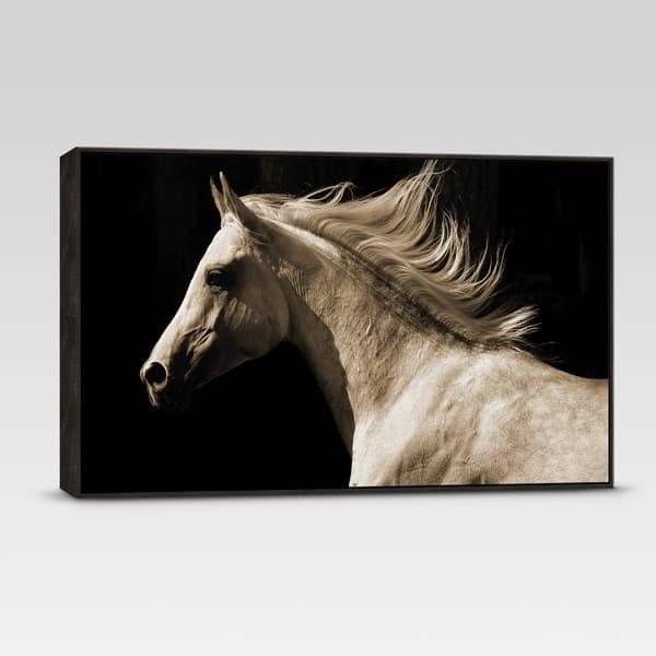 horse-canvas