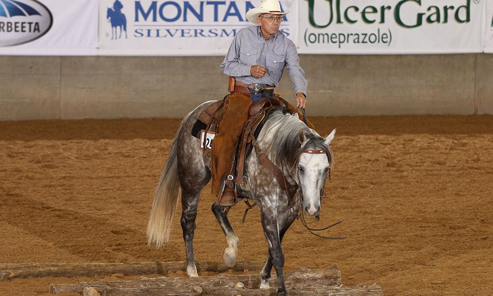 ranch pleasure ranch riding horse shows western riding cowgirl magazine
