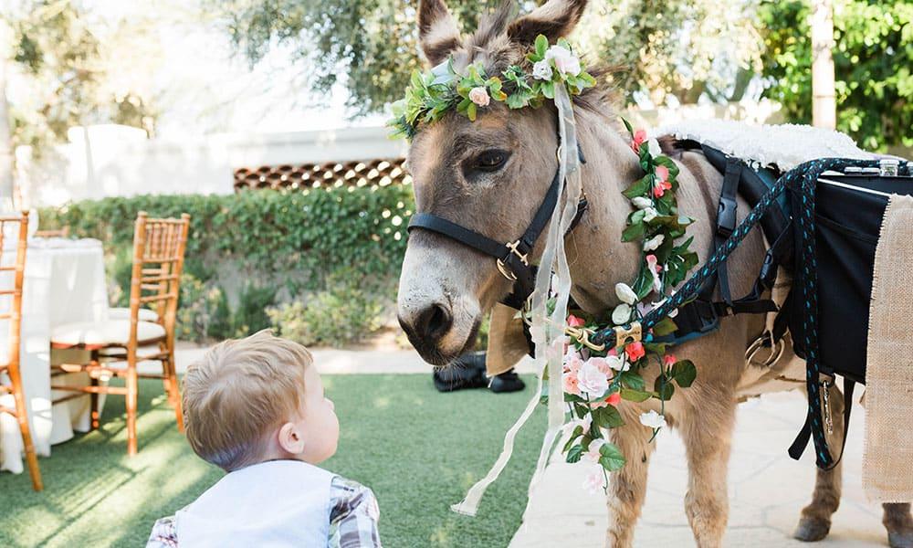 Beer Burros Wedding Trends Cowgirl Wedding Weddings Cowgirl Magazine