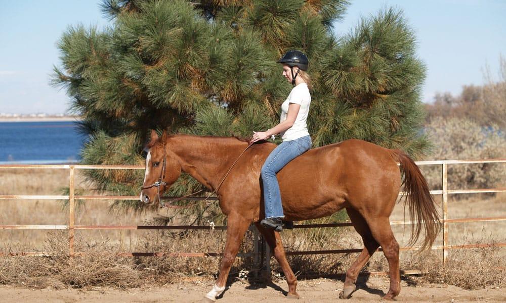 Cowgirl - Bareback