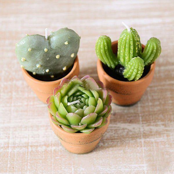 cactus-mini-candles