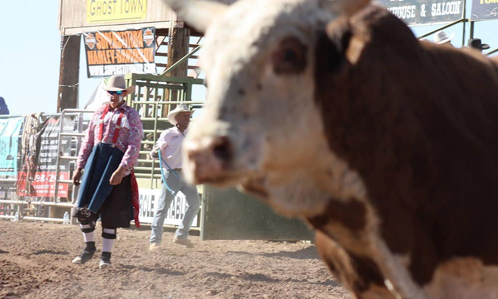 Rodeo Bullfighter Lost Dutchman Days WA Rodeos Rodeo Cowgirl Magazine