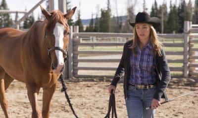 Cowgirl - Amber
