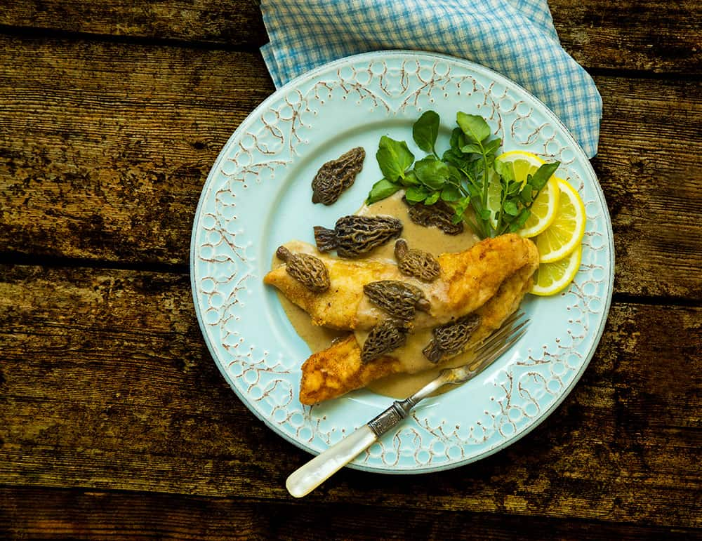 Wild Turkey Scallopini with Morel Mushrooms - July/August 2017 Photo by Susan L. Ebert
