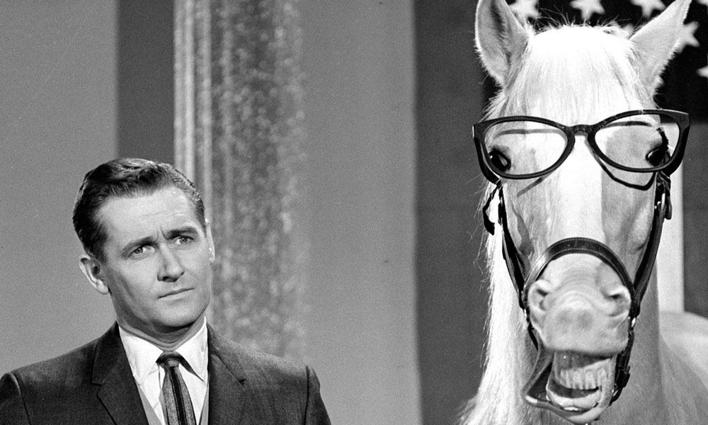 5 Secrets About Mister Ed, The Talking Horse!  Cowgirl. College America Flagstaff Lawyers In Malaysia. Radio And Television Broadcasting Schools. Radon Control Professionals How Clean Carpet. Family Nurse Practitioner Online Program. Cooking Schools In Orlando Data Center Moving. Expense Report Excel Template. Best Interest Paying Current Accounts. Lighthouse Insurance Patchogue
