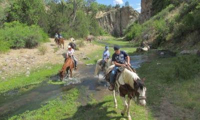 Cowgirl - Adventure