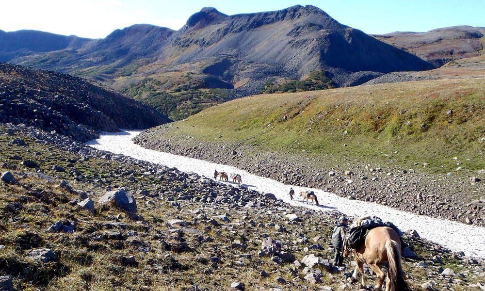 Cowgirl - Trail