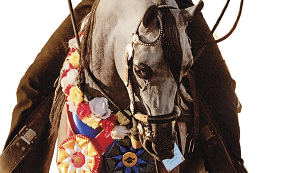 63rd Annual Scottsdale Arabian Horse Show Cowgirl Magazine