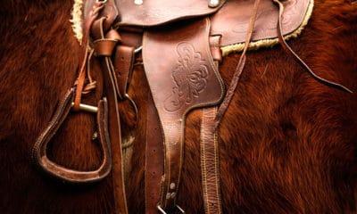 """""""Cowgirl Magazine"""" - Cinchy Horse"""
