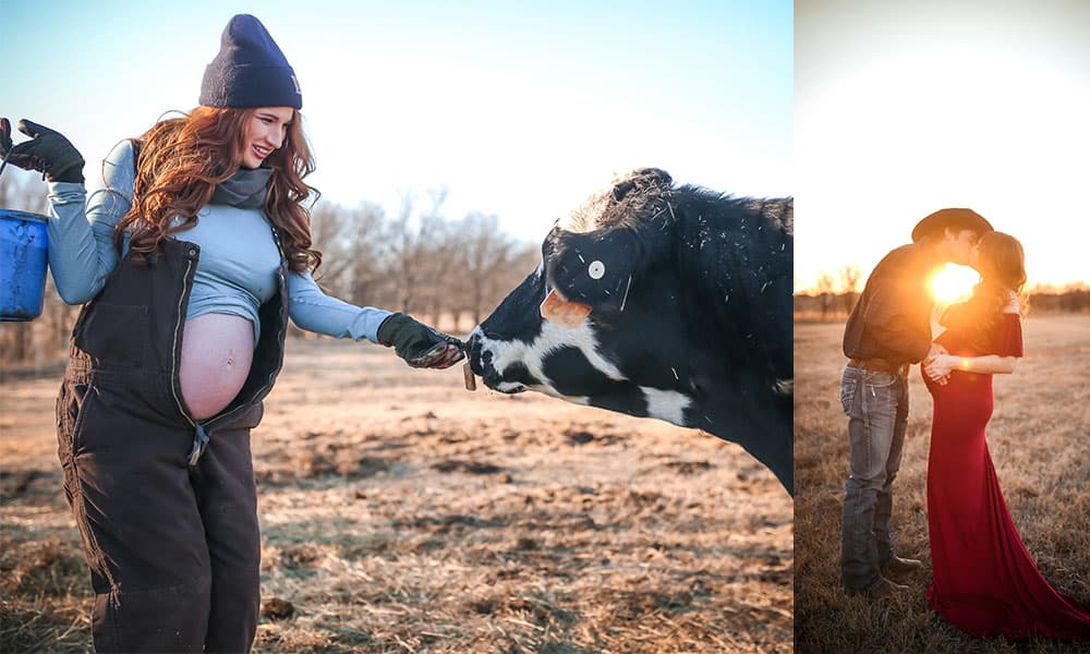 maternity photos photo cow cows cowgirl magazine courtney red green feeding cows