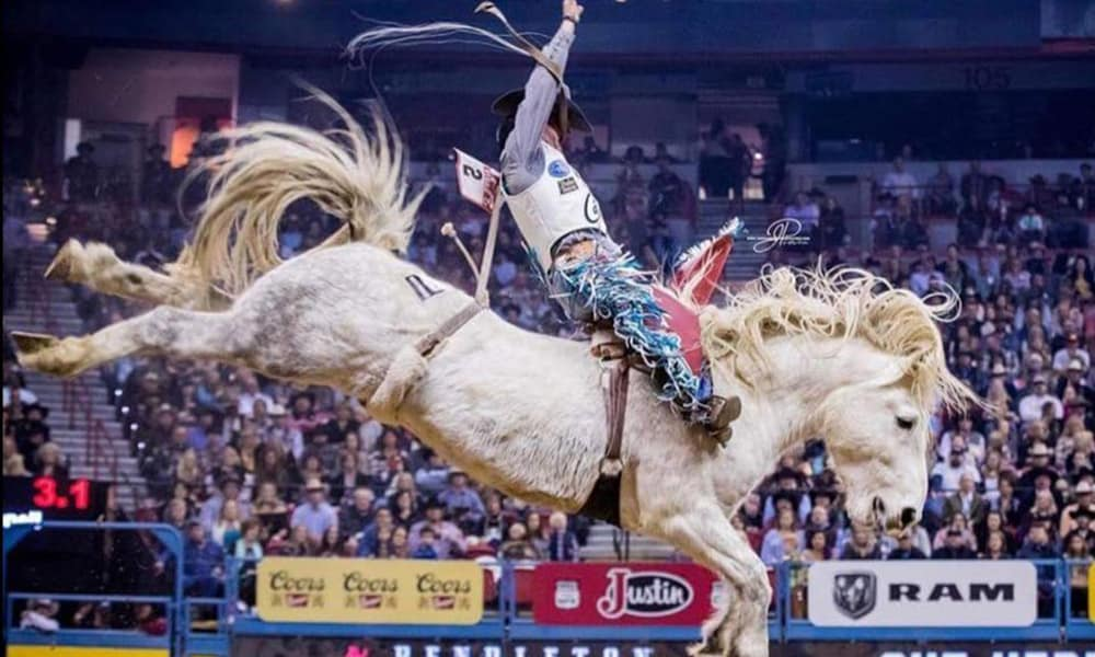 C5 Rodeo Virgil Bareback Horse 2017 The American Cowgirl Magazine