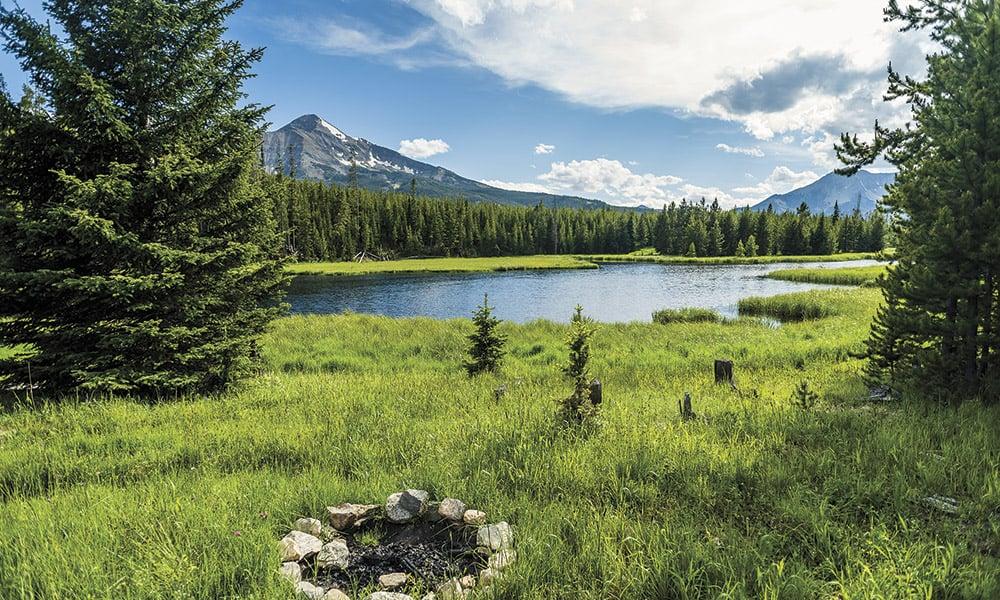 Collective Yellowstone Cowgirl Magazine
