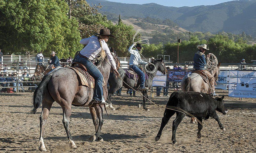 Ranch Roping Reata Brannaman Cowgirl Magazine Pro Am Vaquero by Ken Amorosano