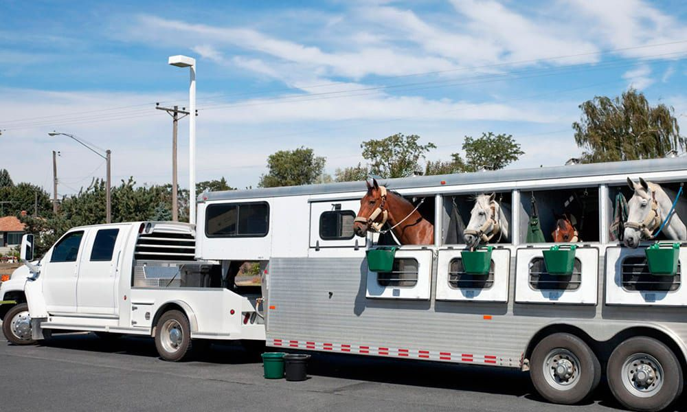 Horse Trailer Driving Safety Athletes Travel Cowgirl Magazine