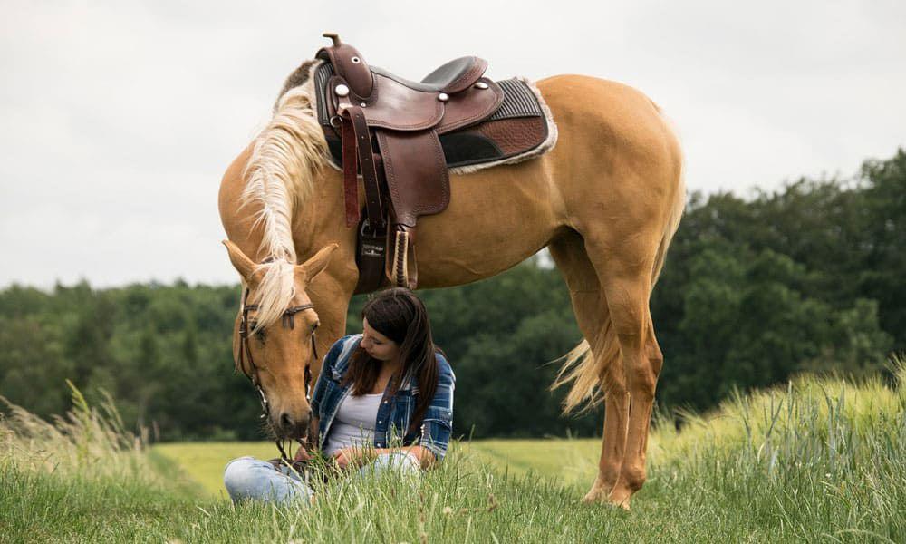 Careers Horse Lovers