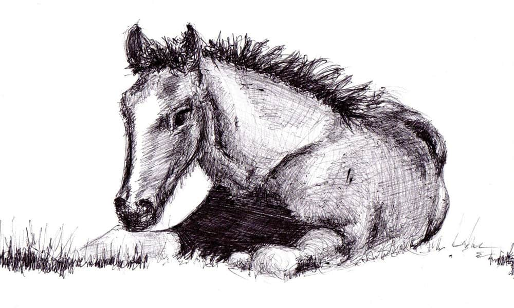 """Cowgirl Magazine"" - Draw Horse"