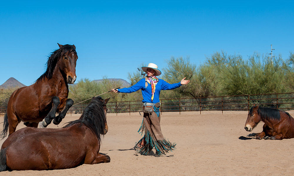 Mustang Maddy Shambaugh Cowgirl Magazine