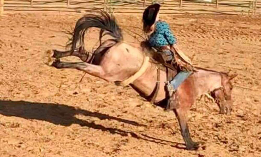 Hunter Norman Memorial Event Cowgirl Magazine