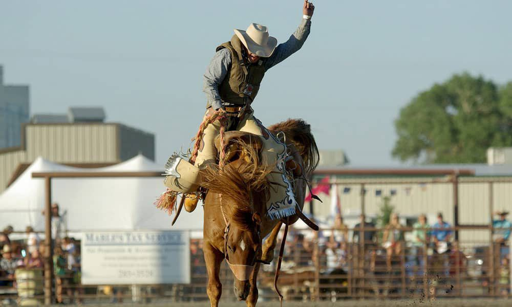 Breeds Rodeo