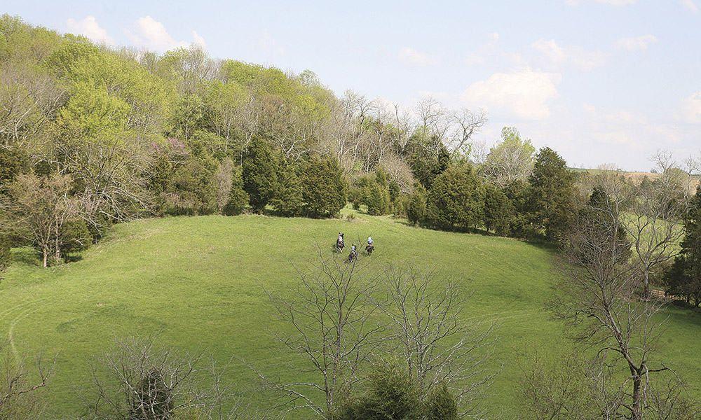 Kentucky bluegrass meadows big red stables farm cowgirl magazine