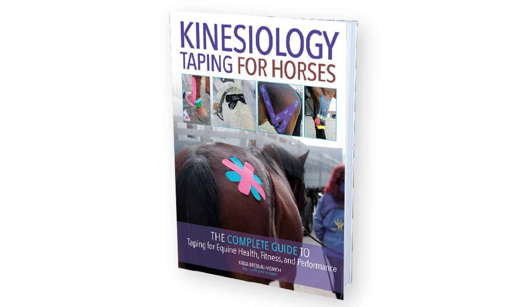 Kinesiology Taping Horses Cowgirl Magazine