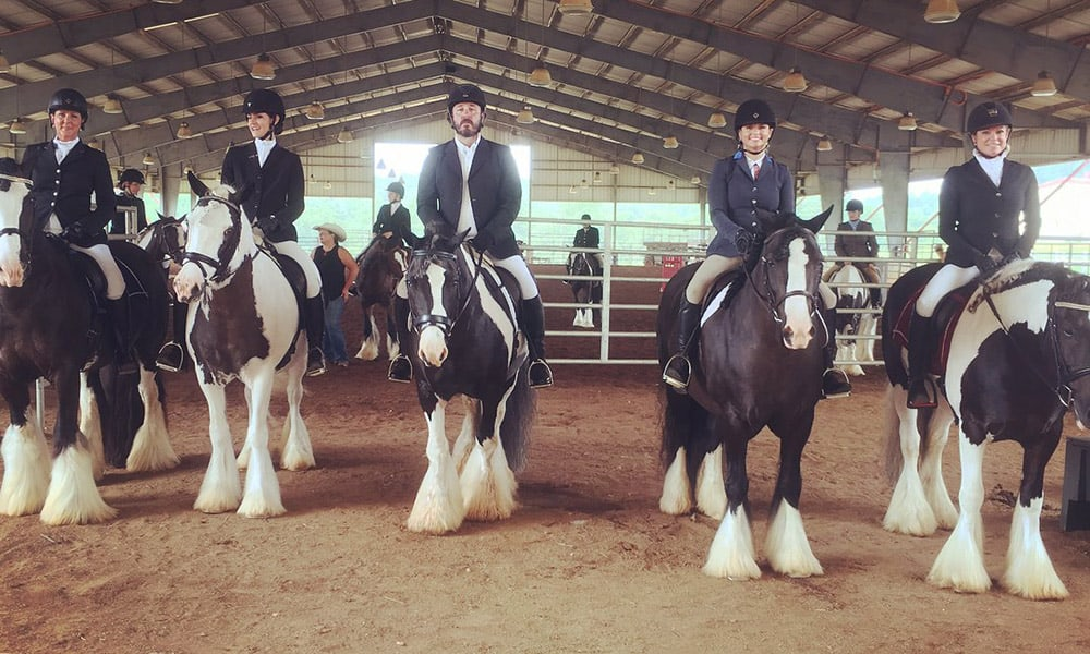 Miranda Lambert Feathered Horse Classic Show
