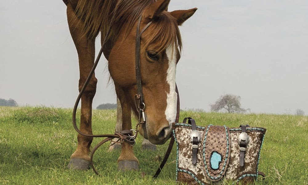 Lonestead Range Cowgirl Magazine