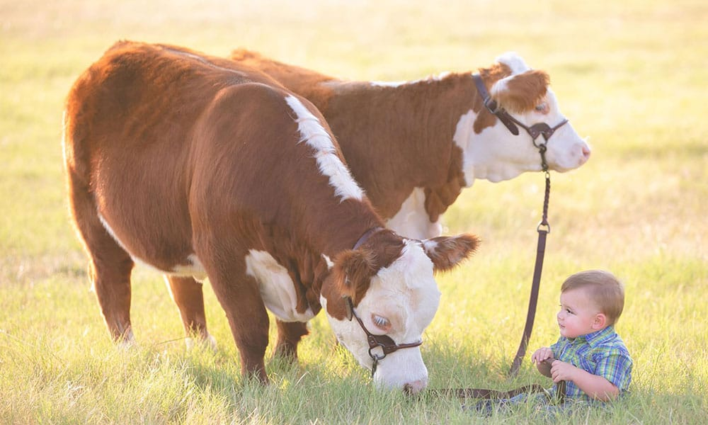 raise kids raise cattle cowgirl magazine