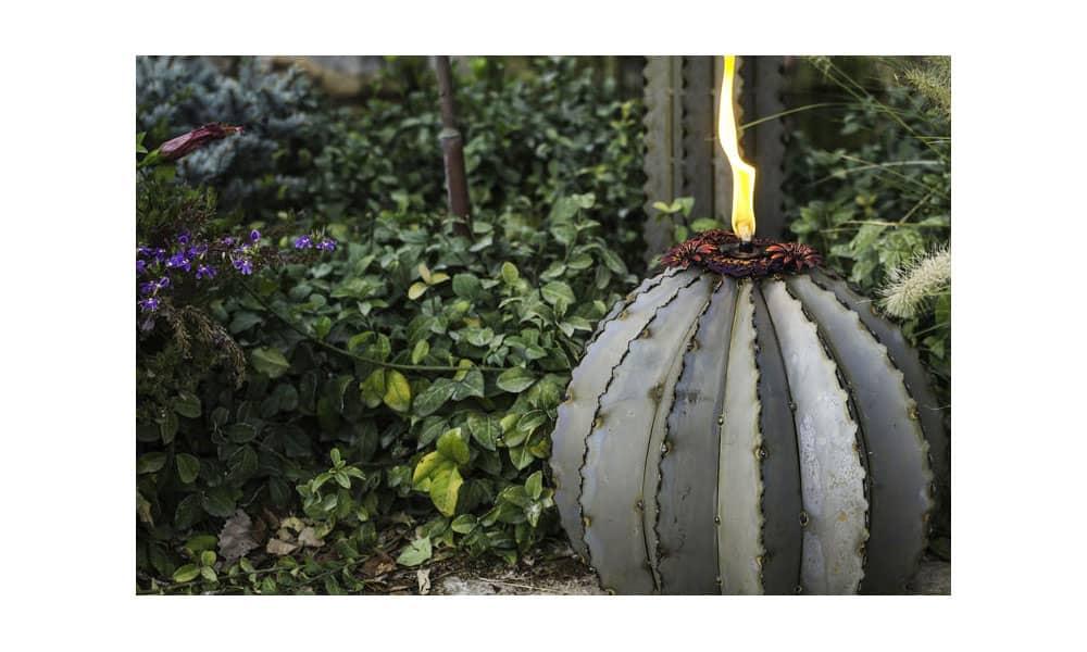 desert steel golden barrel cactus torch
