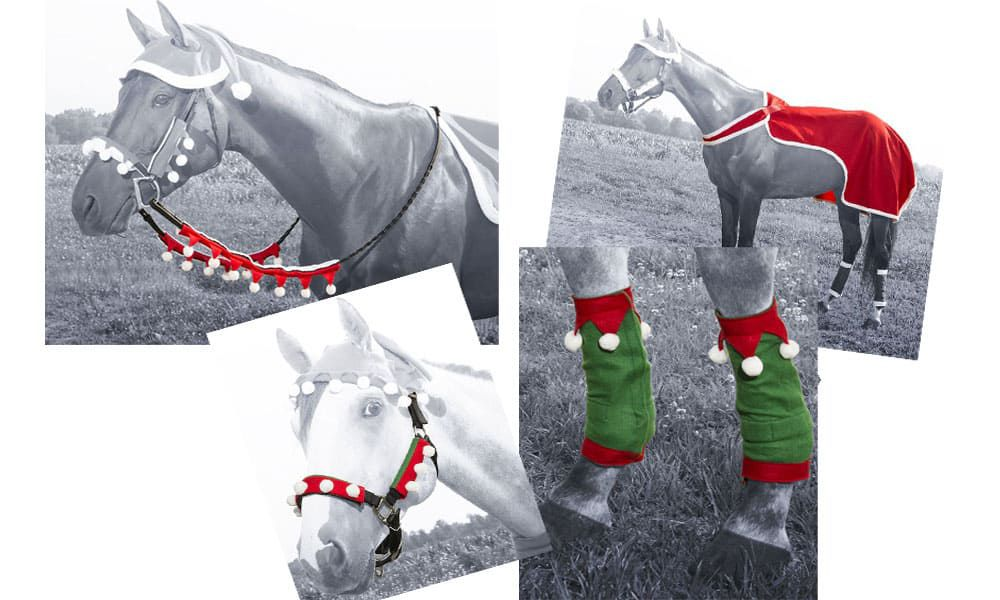 Dress Horse Christmas