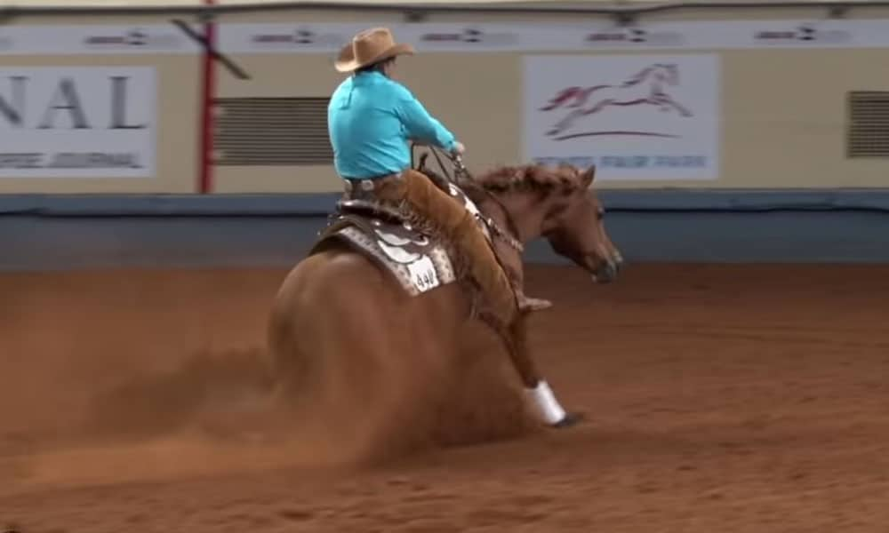 Dan Huss Bridleless Run AQHA World Show Cowgirl Magazine
