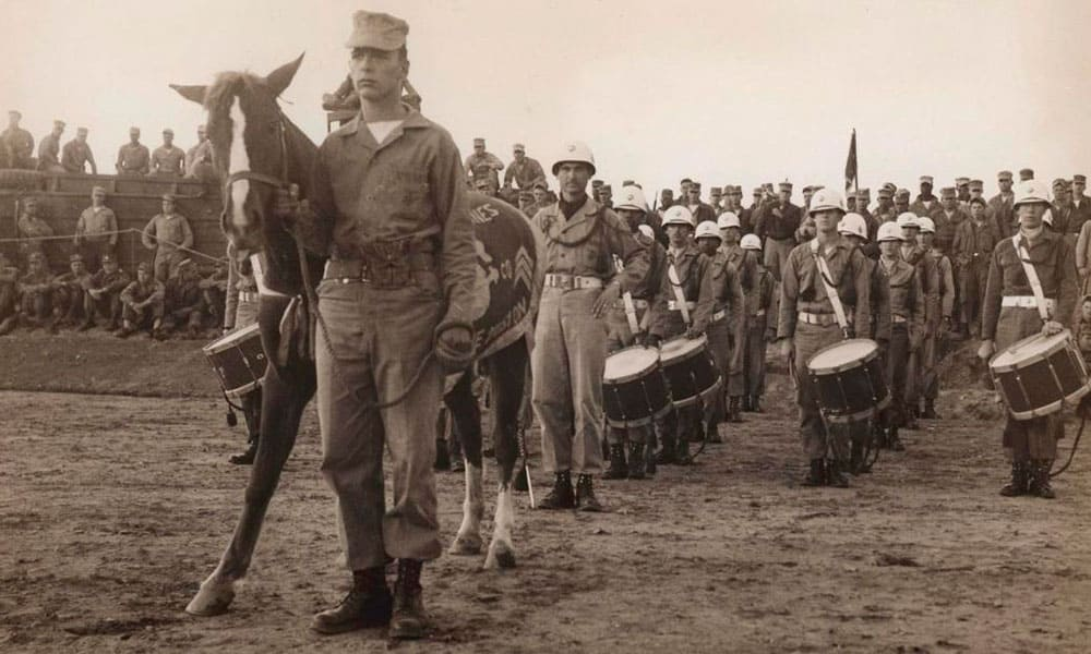 Mare Sergeant Reckless War Horse Cowgirl Magazine