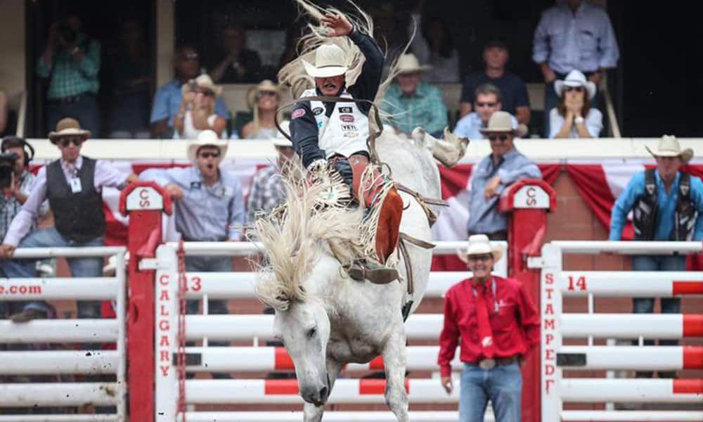 C5 Rodeo's Virgil Bareback horse Cowgirl Magazine