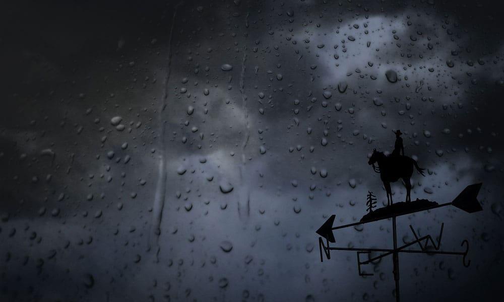 Rain Horses