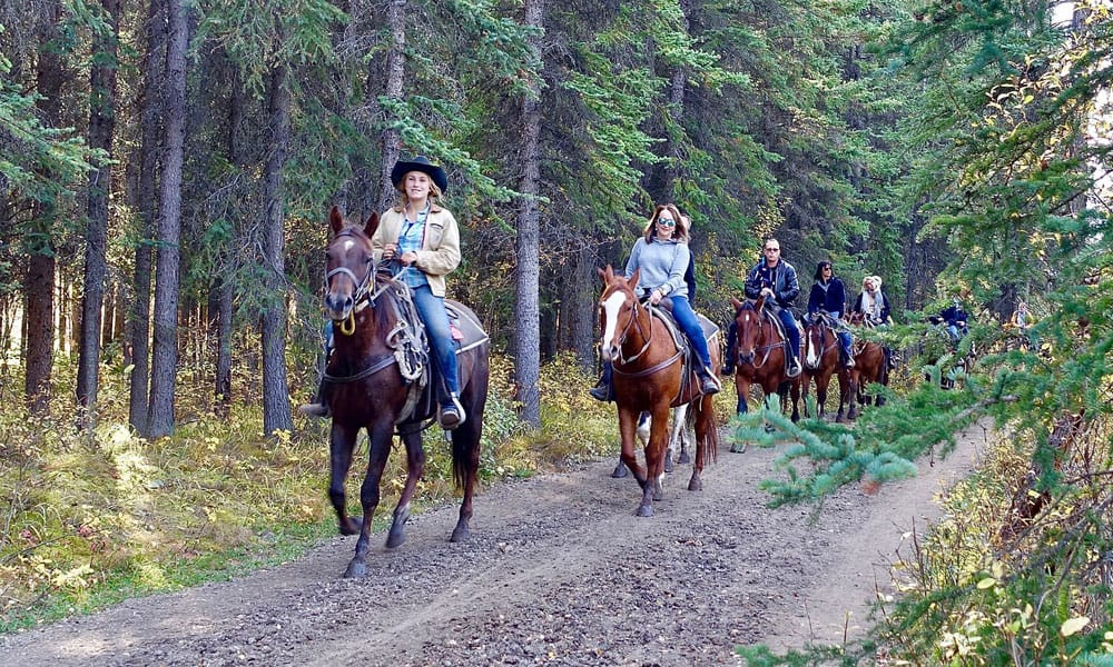 Items Trail Riding