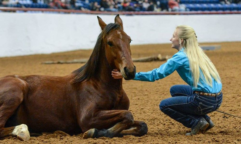 Mustang Magic Fort Worth Stock Show Mustang Heritage Foundation Cowgirl Magazine