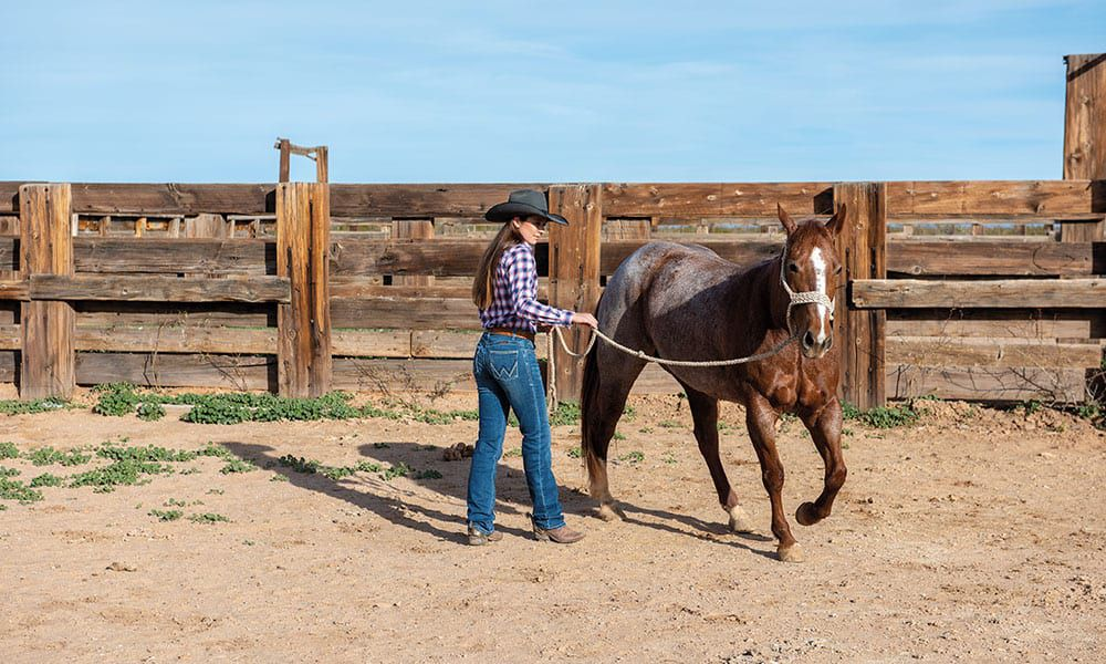 mesa pate and horse on ranch cowgirl magazine