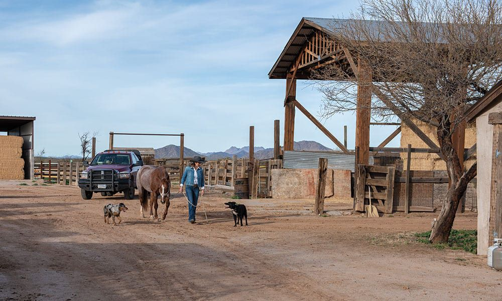 mesa pate heart of the cowgirl on ranch with animals cowgirl magazine
