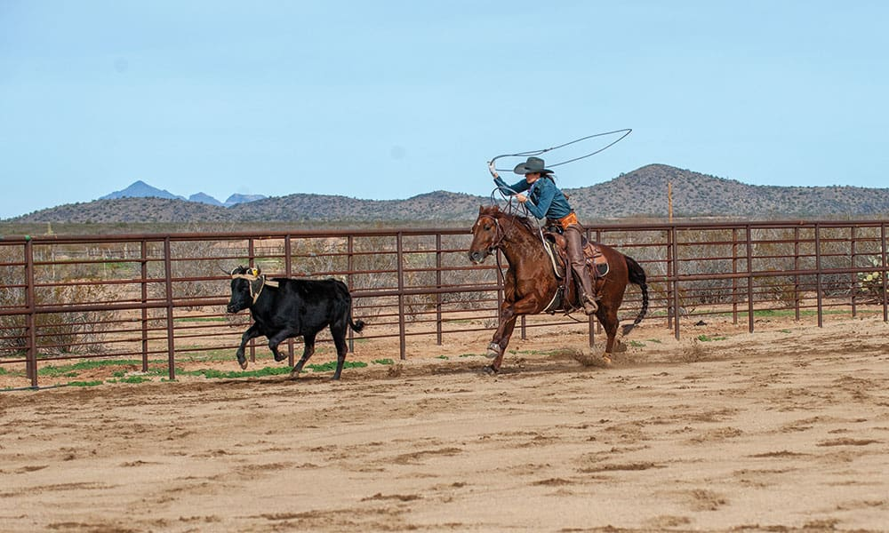 mesa pate roping a calf on a horse cowgirl magazine