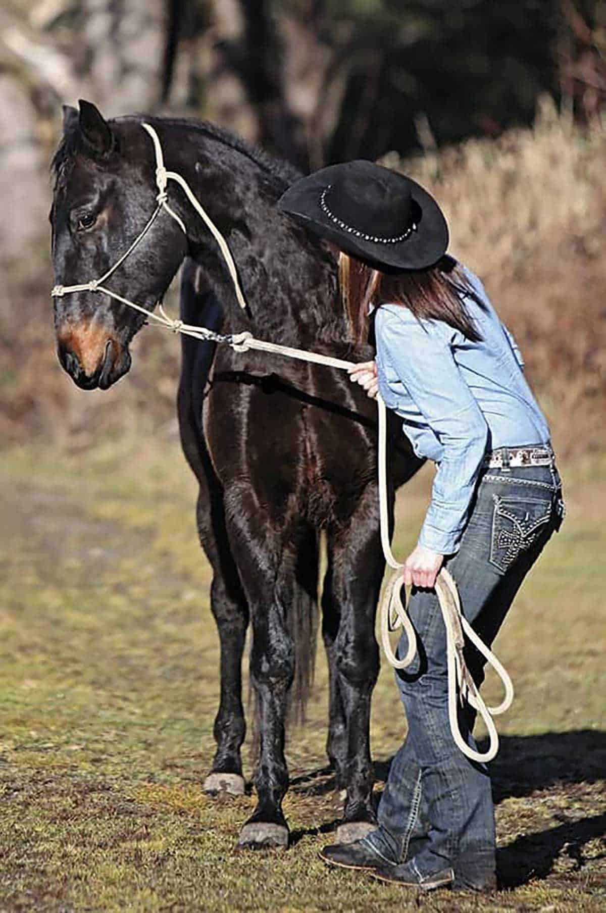 bad-horse-relationship-1-1