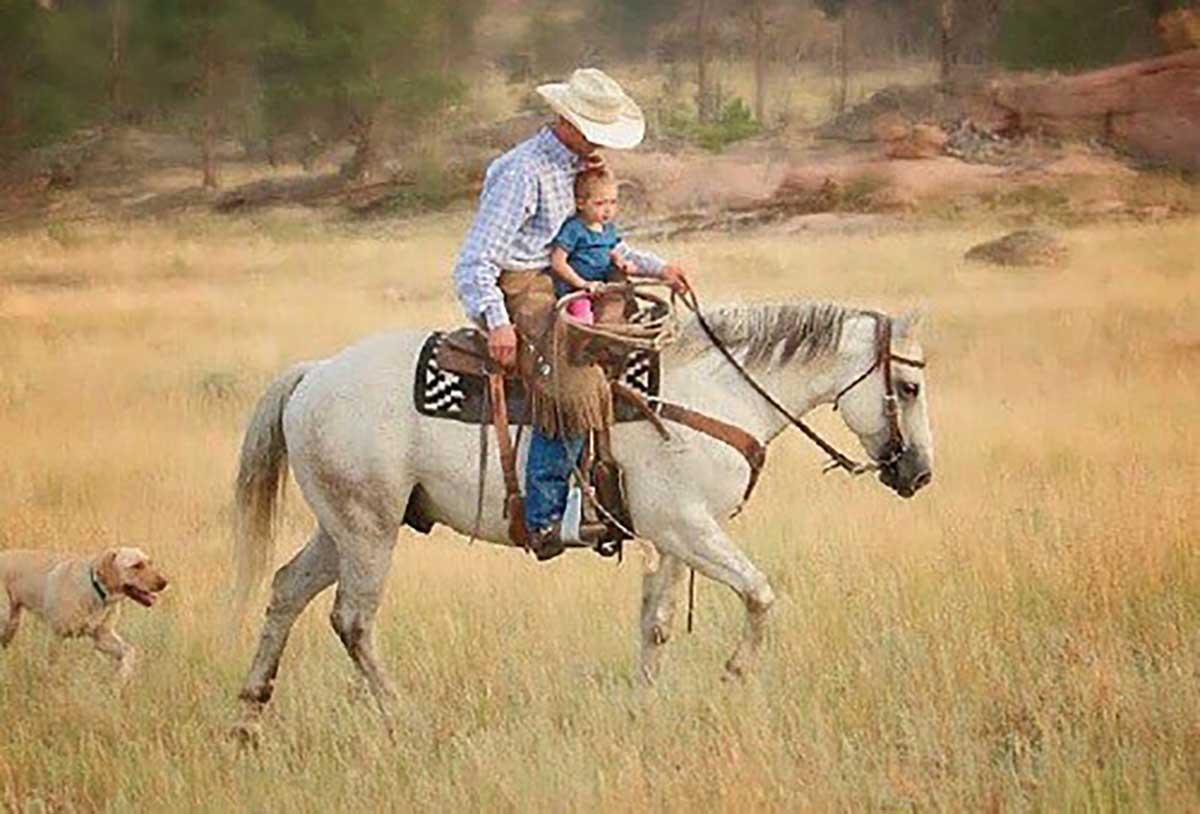 Diamond McNabb Horses